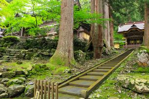 新緑の永平寺の写真素材 [FYI02088083]