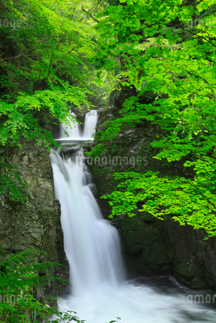 厳立峡 三ツ滝と流れの写真素材 [FYI02088110]