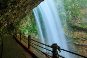 新緑の雷滝の写真素材 [FYI02088186]