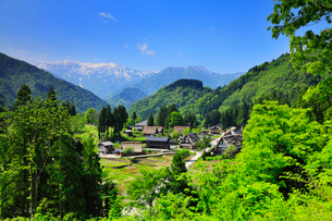 初夏の五箇山・相倉集落の写真素材 [FYI02088206]