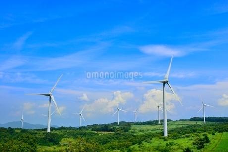 緑の高原に風車の写真素材 [FYI02088209]