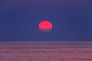 安乗岬 海と水平線に朝日の写真素材 [FYI02088266]