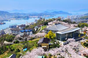 千光寺公園とサクラ 市立美術館と尾道市街の写真素材 [FYI02088420]