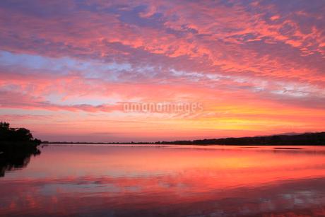 朝焼けの木場潟の写真素材 [FYI02088533]
