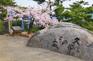 千光寺公園のサクラ 文学の小道の碑の写真素材 [FYI02088623]