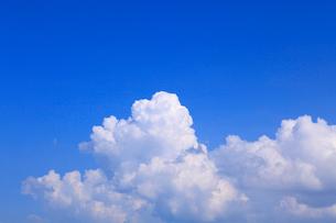 入道雲と青空の写真素材 [FYI02088664]