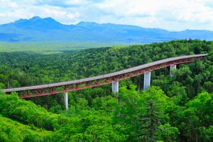三国峠から望む新緑の山並と松見大橋の写真素材 [FYI02088670]
