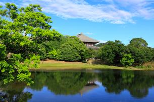 奈良公園 大仏池と青空の写真素材 [FYI02088685]