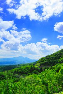 三国峠から望む新緑の山並の写真素材 [FYI02088698]