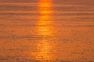 安乗岬 朝光に輝く海面の写真素材 [FYI02088730]