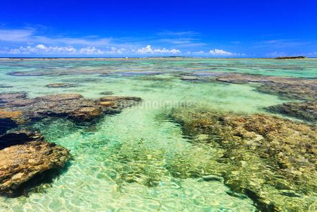 沖縄西表島 星砂の浜と海の写真素材 [FYI02088737]