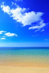 沖縄西表島 南風見田の浜と海の写真素材 [FYI02088828]