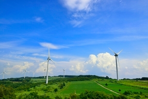 緑の高原に風車の写真素材 [FYI02089056]