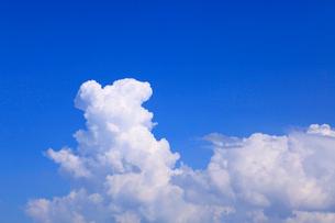 入道雲と青空の写真素材 [FYI02089064]