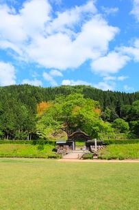 越前・一乗谷朝倉氏遺跡の新緑の写真素材 [FYI02089113]