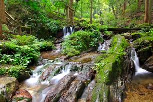 若狭・瓜割の滝の写真素材 [FYI02089127]