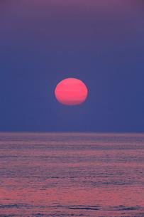 安乗岬 海と水平線に朝日の写真素材 [FYI02089136]