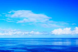沖縄本島 万座毛から望む海の写真素材 [FYI02089147]