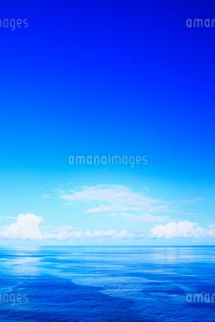 沖縄本島 万座毛から望む海の写真素材 [FYI02089343]