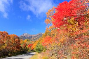 野辺山高原 八ヶ岳・赤岳と紅葉に道の写真素材 [FYI02089507]