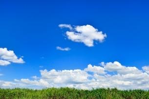 緑の土手と青空に雲の写真素材 [FYI02089515]