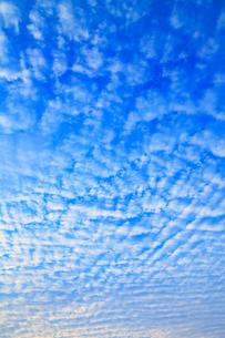 空と雲の写真素材 [FYI02089521]