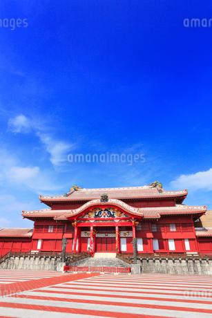 沖縄本島 首里城正殿の写真素材 [FYI02089553]