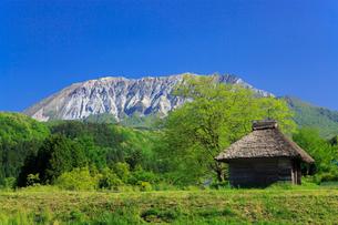 茅葺小屋と新緑の大山の写真素材 [FYI02089642]