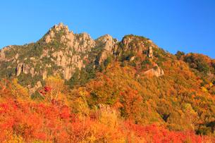 瑞牆山自然公園より紅葉と瑞牆山の写真素材 [FYI02089701]