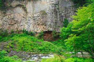 緑の厳立峡の写真素材 [FYI02089719]