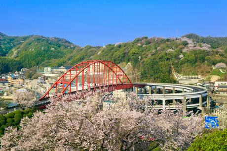 音戸大橋とサクラの写真素材 [FYI02089795]