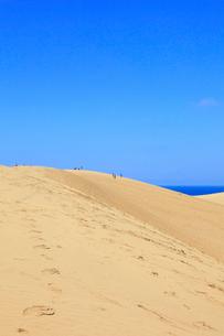 鳥取砂丘と日本海の写真素材 [FYI02090046]