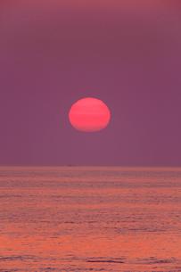 安乗岬 海と水平線に朝日の写真素材 [FYI02090049]