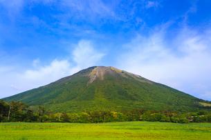 新緑の桝水高原から望む大山の写真素材 [FYI02090163]