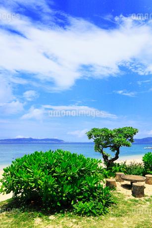 沖縄石垣島 フサキビーチの海の写真素材 [FYI02090189]