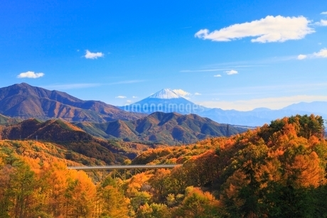 紅葉の八ヶ岳高原大橋と富士山の写真素材 [FYI02090222]