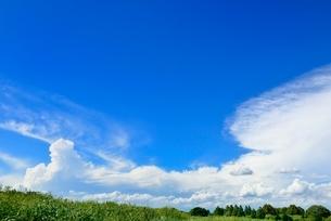 緑の土手と青空に雲の写真素材 [FYI02090368]