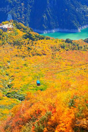 立山黒部 大観峰より紅葉のタンボ平と黒部湖・立山ロープウェイの写真素材 [FYI02090498]