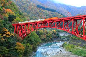 紅葉の黒部峡谷 トロッコ電車と新山彦橋の写真素材 [FYI02090535]