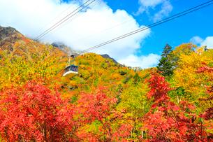 立山黒部 紅葉の黒部平と立山連峰・立山ロープウェイ の写真素材 [FYI02090840]