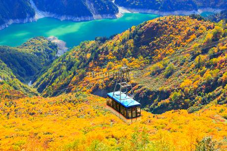 大観峰より紅葉のタンボ平と黒部湖・立山ロープウェイの写真素材 [FYI02090848]