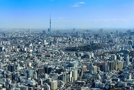 サンシャイン60より東京の街並みとスカイツリーの写真素材 [FYI02091112]