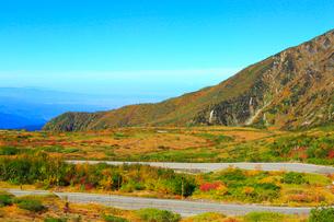 立山黒部 紅葉の天狗平とアルペンロードの写真素材 [FYI02091118]