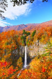 白水滝と紅葉の写真素材 [FYI02091123]