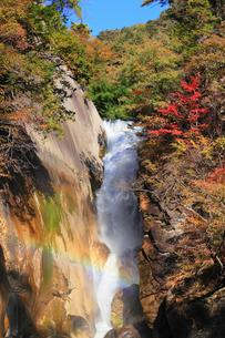 昇仙峡・仙娥滝と紅葉に虹の写真素材 [FYI02091168]