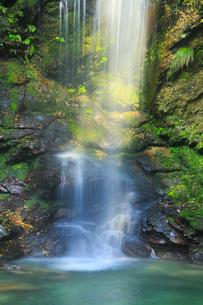 琵琶の滝の写真素材 [FYI02091178]