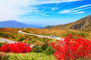 秋の立山黒部アルペンルートの写真素材 [FYI02091224]