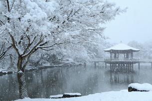 降雪の奈良公園 浮見堂の写真素材 [FYI02091291]
