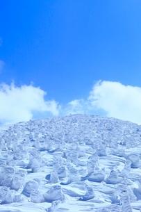 蔵王 地蔵山の樹氷の写真素材 [FYI02091296]