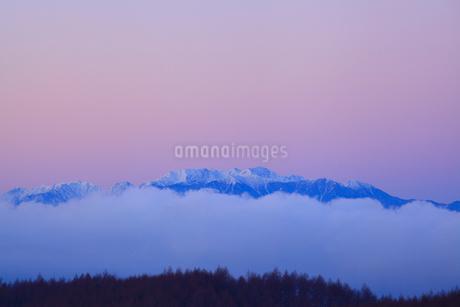 霧ヶ峰高原より望む北アルプスの朝焼けの写真素材 [FYI02091519]